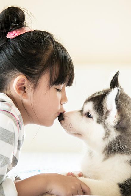 女の子と犬の画像