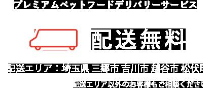 husse japan 東彩